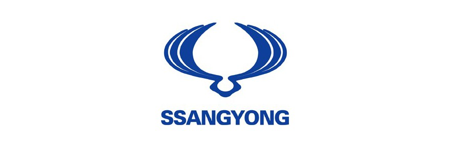 COVER CHIAVE SSANGYONG
